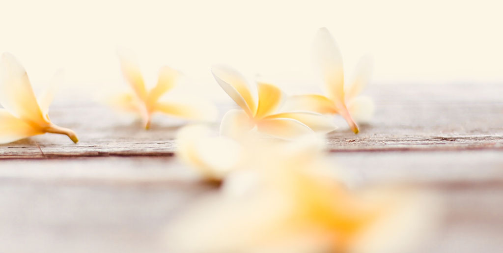 Hawaii massage kurs och E-utbildning